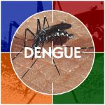 Dengue- Em Casos suspeitos de gravidade, deverão ser notificados